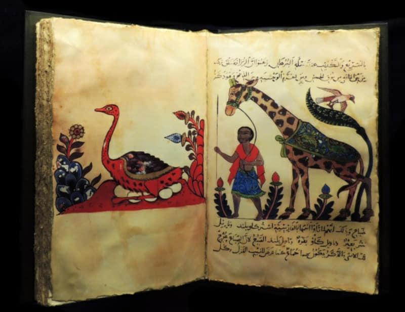 কিতাব-আল-হায়াওয়ান