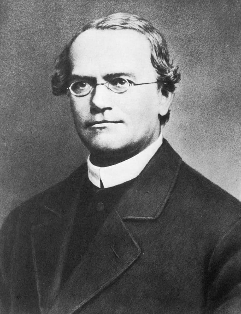 গ্রেগর জোহান মেন্ডেল