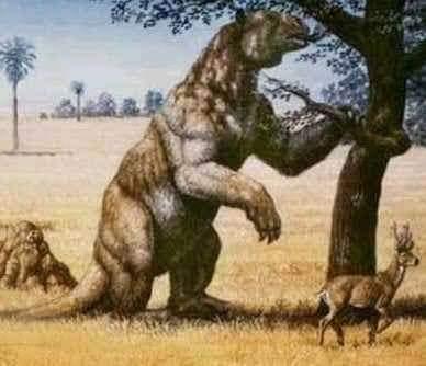 Giant Ground Sloth এর কাল্পনিক চিত্র